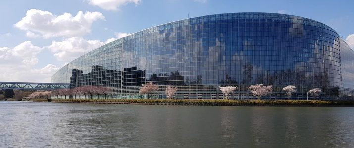 Young EU Voices in Strasbourg